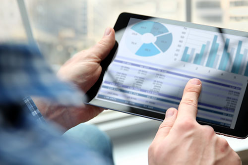 Blue Chariot Management provides all financial data through online reporting